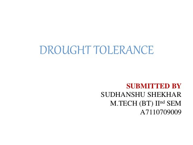 DROUGHT TOLERANCE SUBMITTED BY SUDHANSHU SHEKHAR M.TECH (BT) IInd SEM A7110709009