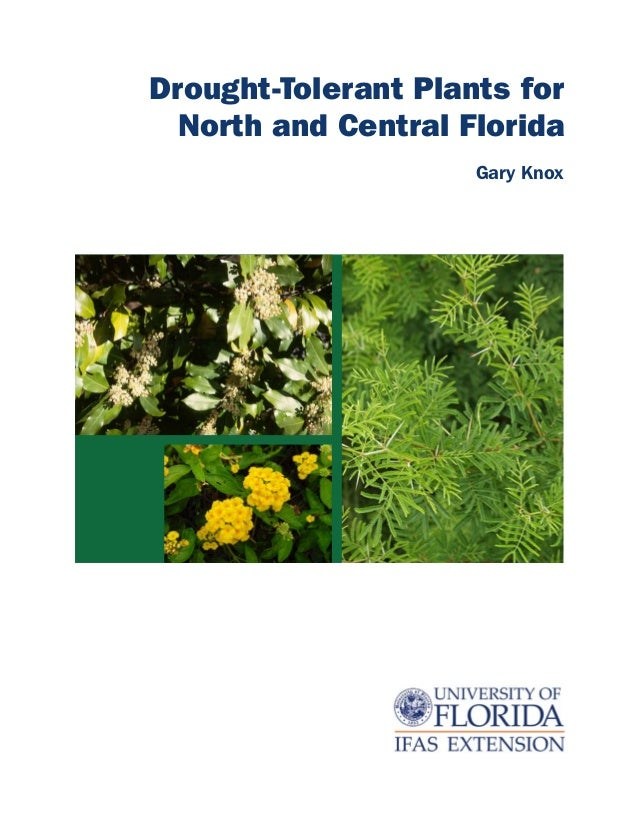 Drought-Tolerant Plants for  North and Central Florida                     Gary Knox