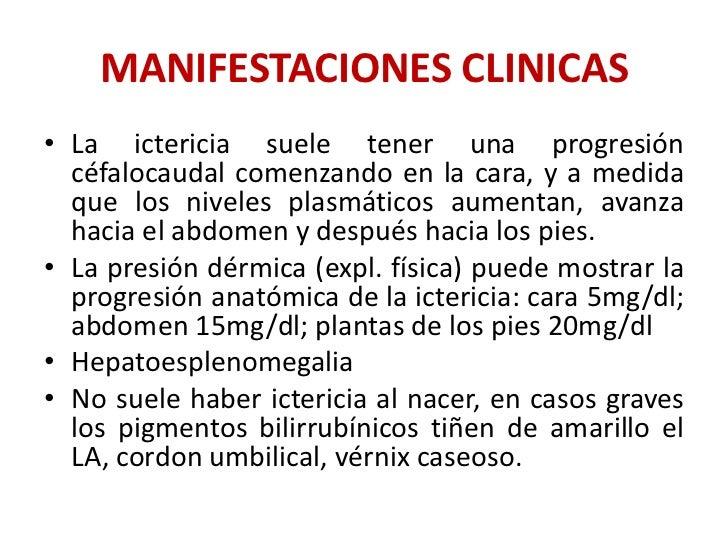 Dr panchito ictericia por incompatibilidad sanguinea for Incompatibilidad en plantas