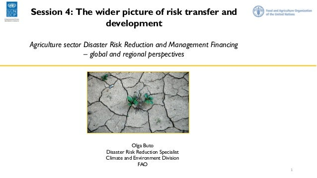 Session 4: The wider picture of risk transfer and development Agriculture sector Disaster Risk Reduction and Management Fi...