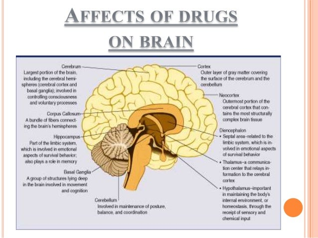 Effects Of Drug Abuse During Pregnancy
