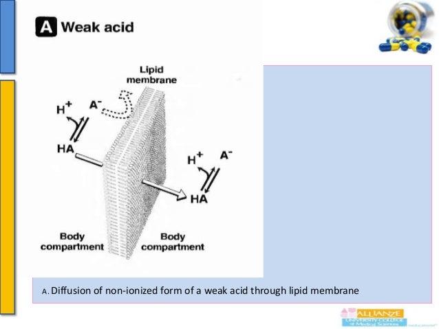 Continue……….  B. Diffusion of non-ionized form of a weak base through lipid membrane.