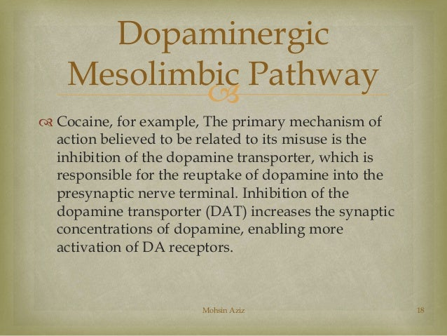 journal summary inhibition of amygdaloid dopamine Arquivos de neuro-psiquiatria  dx - psychotropic drugs and dopamine uptake inhibition res  all the contents of this journal,.