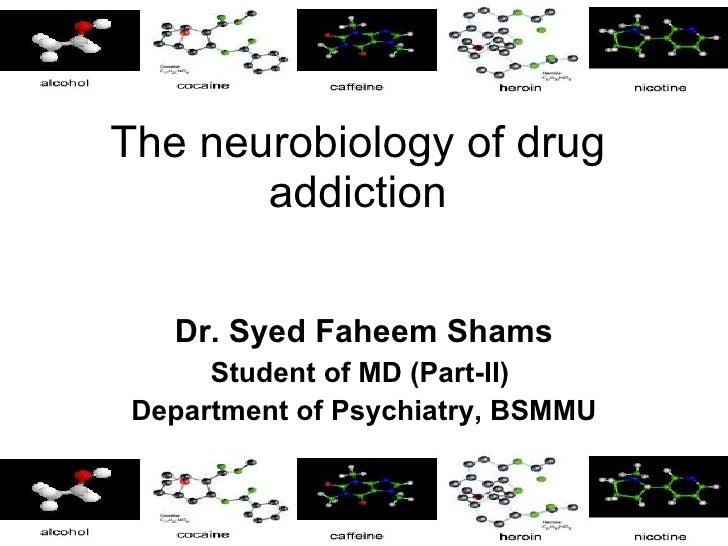 Drug addiction neurobiology
