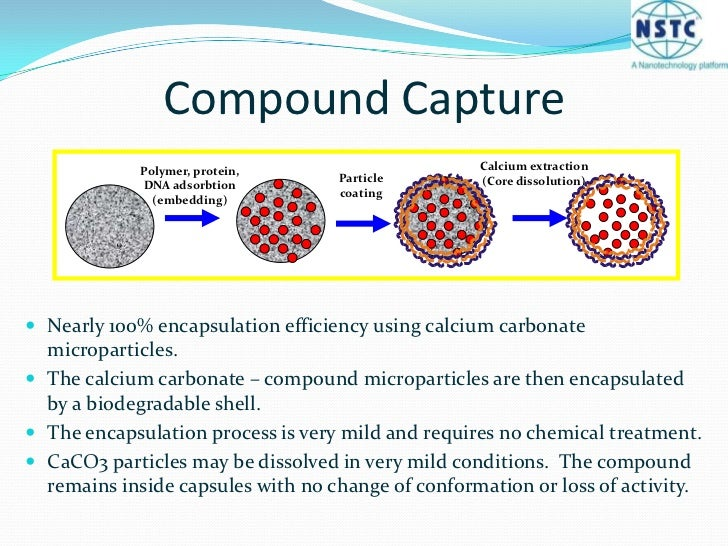 Calcium extraction (Core dissolution)<br />Polymer, protein, DNA adsorbtion (embedding)<br />Particle coating<br />Compoun...