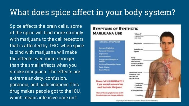 How does smoking affect your body essay