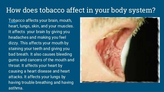 how does tobacco use affect the human body pdf