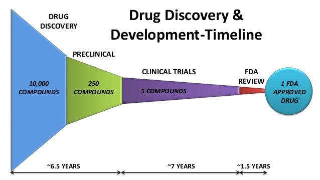 drug development process essays