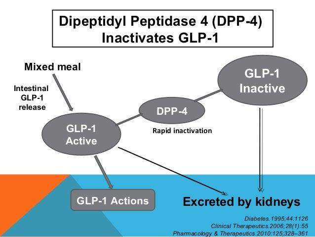 Dpp study pdf