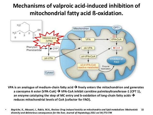 Valproic Acid And Metabolism Jill Scott Insomnia