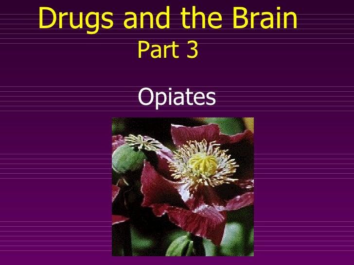 Drugs cause long term memory loss photo 14