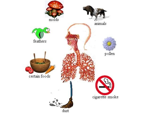 Drug Therapy For Bronchial Asthma Satya Xp