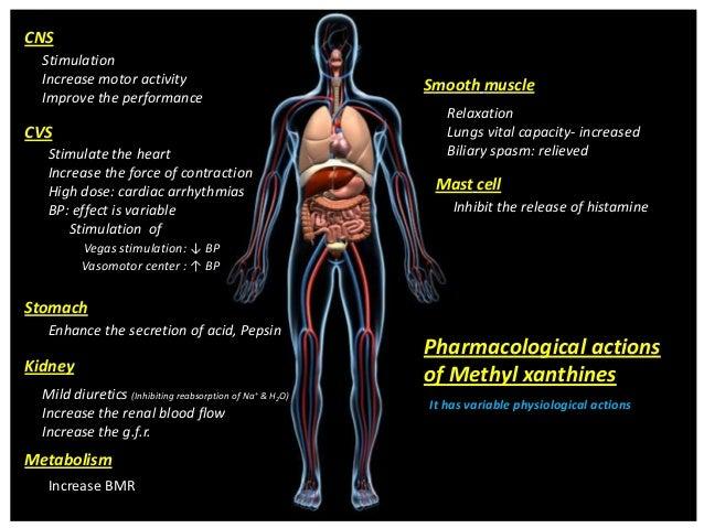 Pharmacological actionsof Methyl xanthinesCNSStimulationIncrease motor activityImprove the performanceCVSStimulate the hea...