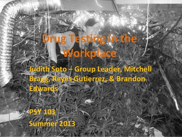 Drug Testing in the Workplace Judith Soto – Group Leader, Mitchell Bragg, Reyes Gutierrez, & Brandon Edwards PSY 103 Summe...