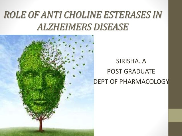ROLE OF ANTI CHOLINE ESTERASES IN ALZHEIMERS DISEASE SIRISHA. A POST GRADUATE DEPT OF PHARMACOLOGY