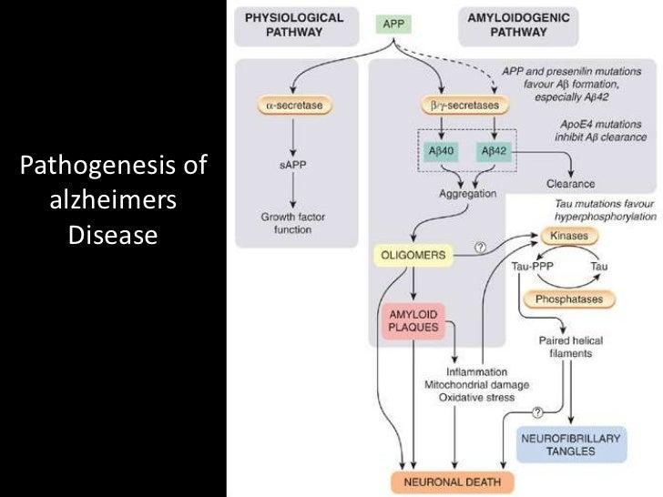 drug treatment of alzheimers disease 7 728