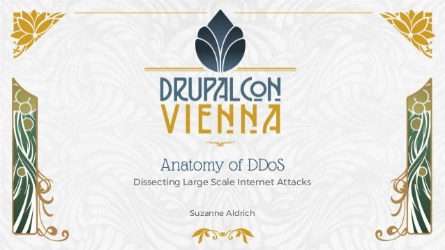 Anatomy of DDoS Dissecting Large Scale Internet Attacks Suzanne Aldrich