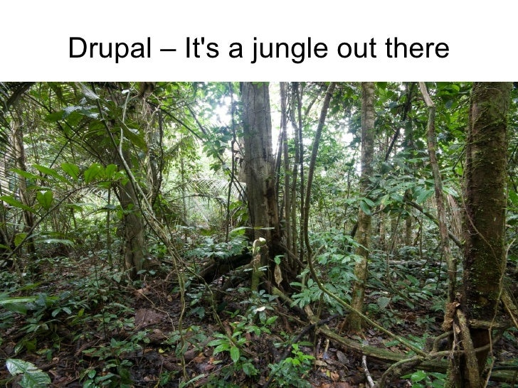 Drupal – It's a jungle out there