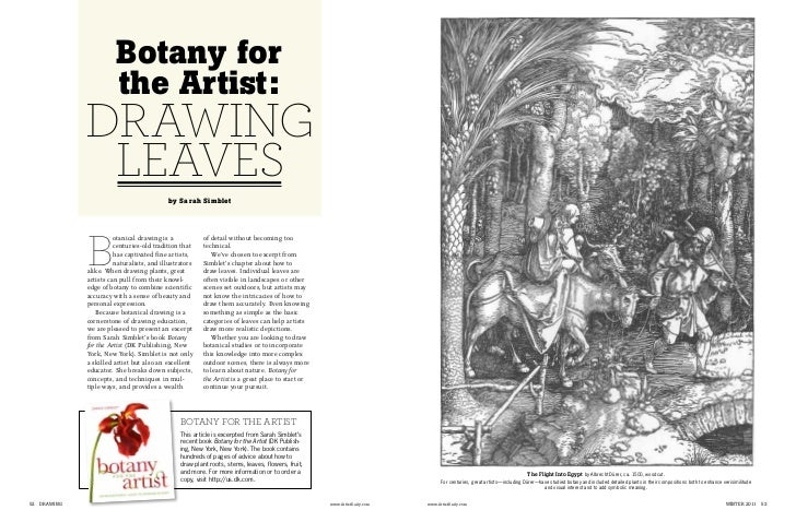 Drawing Botany feature