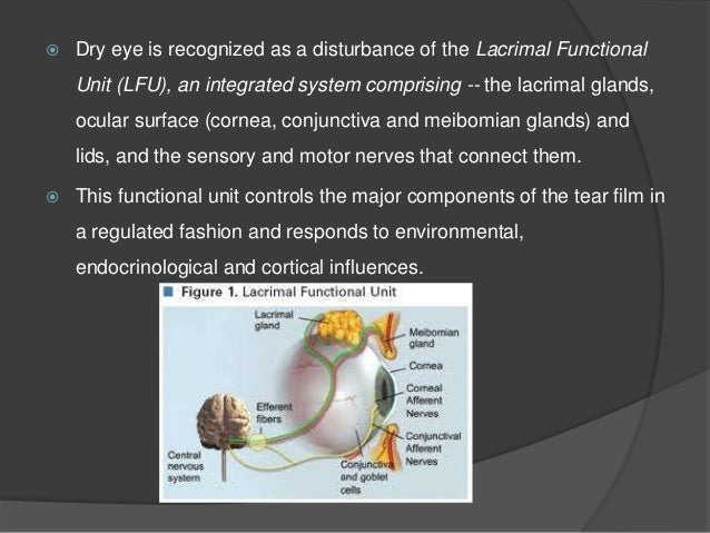  Conditions associated with non-Sjogren syndrome dry eye Primary lacrimal gland deficiencies Age-related dry eye Congenit...