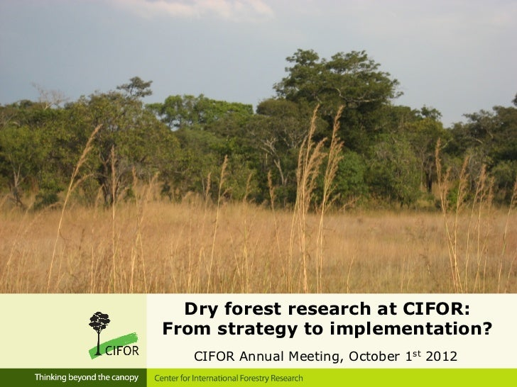 Dry forest research at CIFOR:From strategy to implementation?   CIFOR Annual Meeting, October 1st 2012