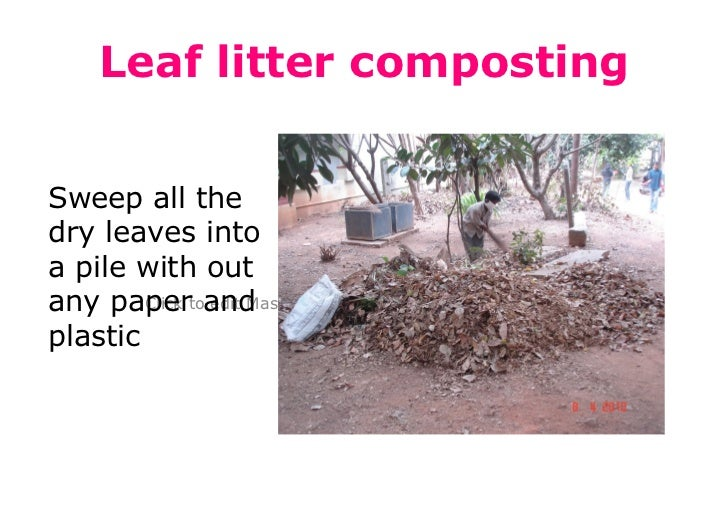 Leaf litter compostingSweep all thedry leaves intoa pile with outany papertoand        Click edit Master subtitle stylepla...