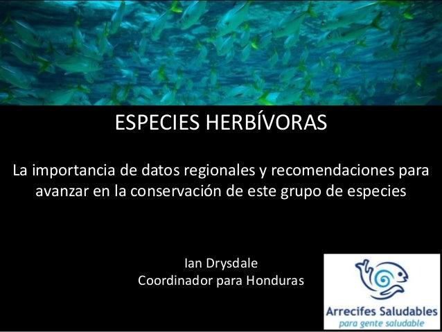 ESPECIES HERBÍVORAS La importancia de datos regionales y recomendaciones para avanzar en la conservación de este grupo de ...