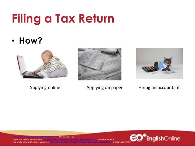 how to view your tax return online
