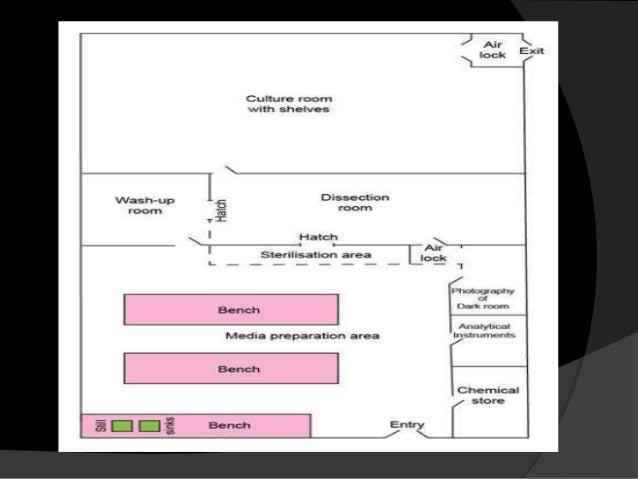 tissue culture room design
