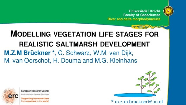 Faculty of Geosciences River and delta morphodynamics MODELLING VEGETATION LIFE STAGES FOR REALISTIC SALTMARSH DEVELOPMENT...
