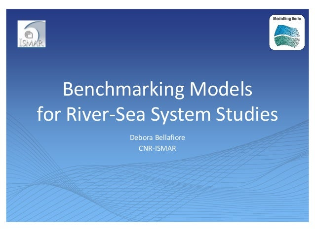 Benchmarking Models for River-Sea System Studies Debora Bellafiore CNR-ISMAR