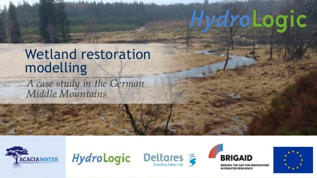 Wetland restoration modelling A case study in the German Middle Mountains