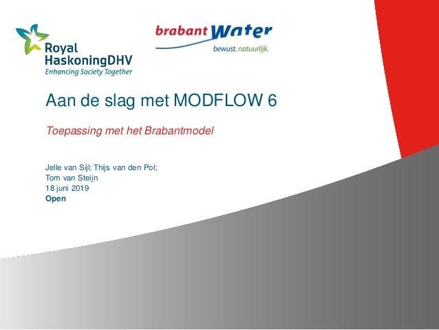Aan de slag met MODFLOW 6 Toepassing met het Brabantmodel Jelle van Sijl; Thijs van den Pol; Tom van Steijn 18 juni 2019 O...