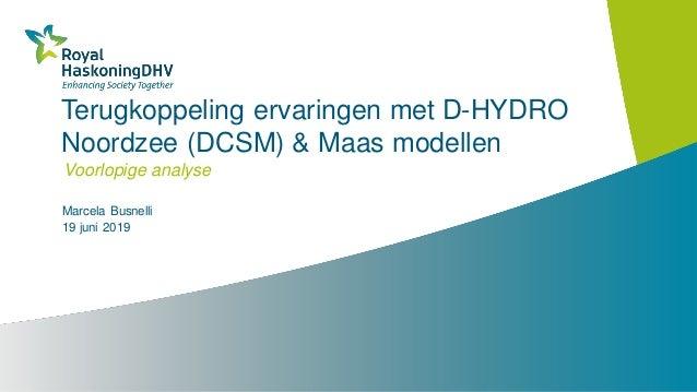 Terugkoppeling ervaringen met D-HYDRO Noordzee (DCSM) & Maas modellen Voorlopige analyse Marcela Busnelli 19 juni 2019