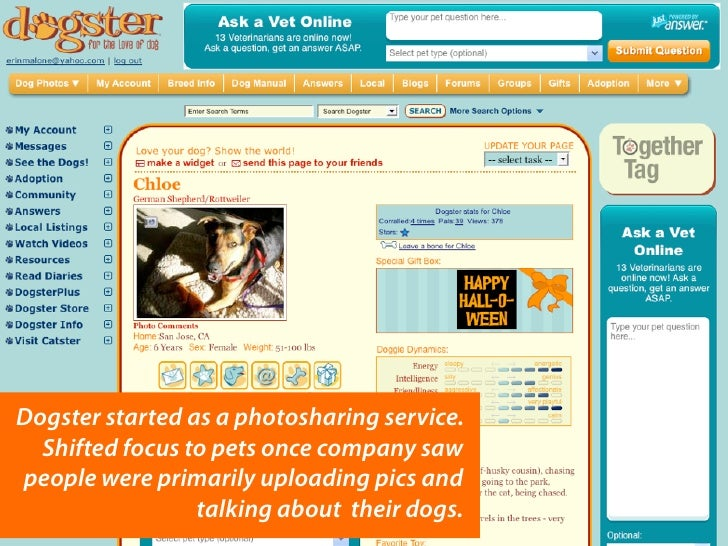 Dogster started as a photosharing service.   Shifted focus to pets once company saw people were primarily uploading pics a...
