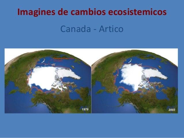 Imagines de cambios ecosistemicos Canada - Artico