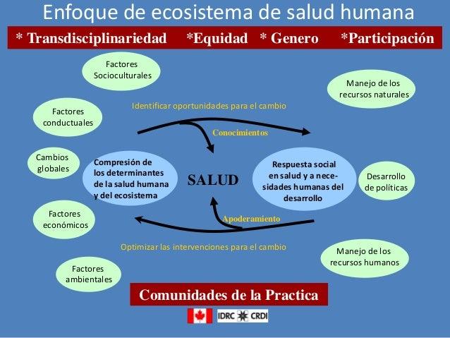 Enfoque de ecosistema de salud humana * Transdisciplinariedad  *Equidad * Genero  Factores Socioculturales  *Participación...