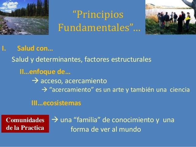 """""""Principios Fundamentales""""… I.  Salud con… Salud y determinantes, factores estructurales II…enfoque de…  acceso, acercami..."""