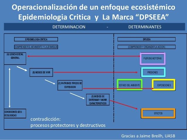 Acciones ACCIONES  Casi-experimental  Observacional / experimento natural  Reducción de desigualdades Mejoramiento de vivi...