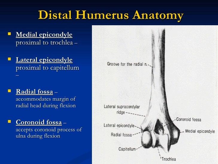 D) supracondylar fracture