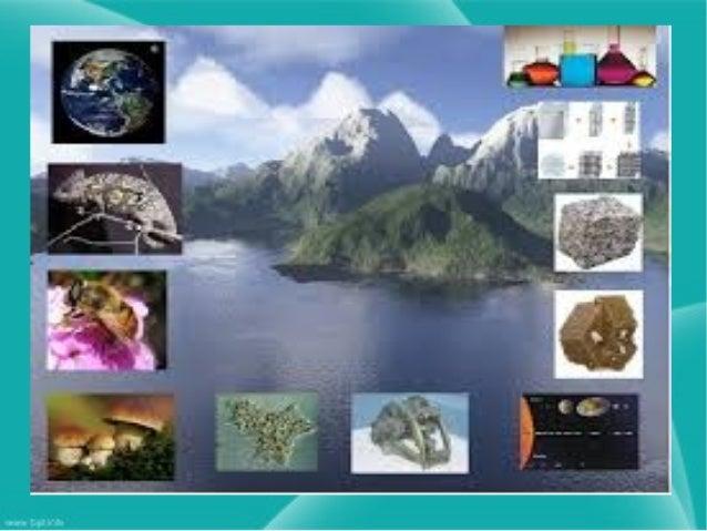 Ramas de las ciencias naturales Astronomía: se ocupa del estudio de los cuerpos celestes, sus movimientos, los fenómenos l...