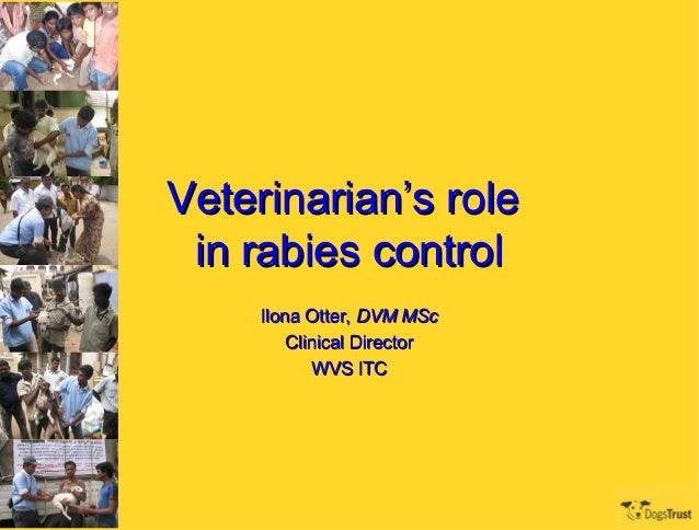 Veterinarian's role in rabies control     Ilona Otter, DVM MSc         Clinical Director            WVS ITC