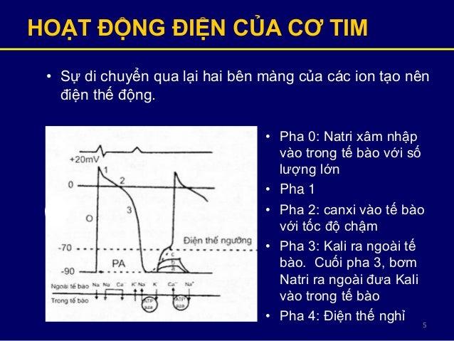 5 HOẠT ĐỘNG ĐIỆN CỦA CƠ TIM • Sự di chuyển qua lại hai bên màng của các ion tạo nên điện thế động. • Pha 0: Natri xâm nhập...