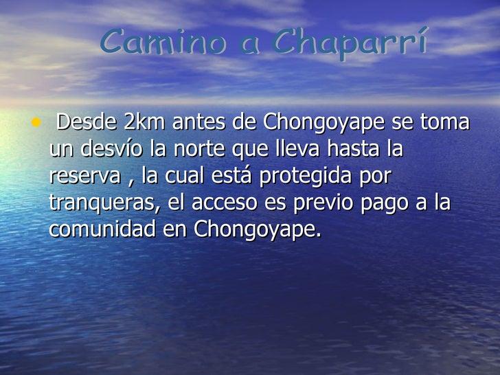 <ul><li>Desde 2km antes de Chongoyape se toma un desvío la norte que lleva hasta la reserva , la cual está protegida por t...