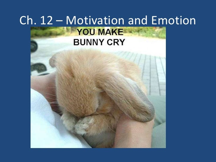 Ch. 12 – Motivation and Emotion