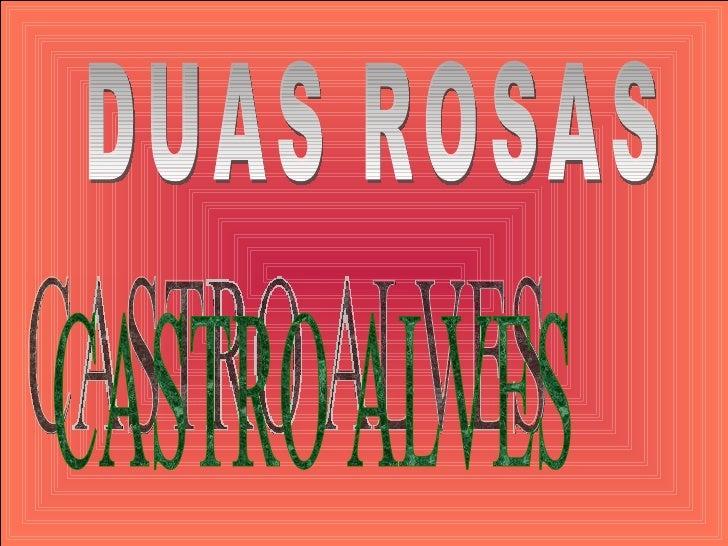 DUAS ROSAS CASTRO ALVES