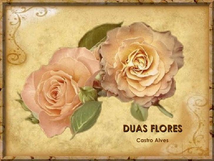 DUAS FLORES Castro Alves