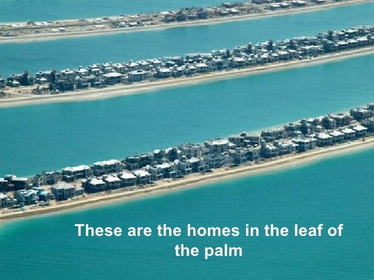 Dubai another world ululullithese are the homes in the leaf of the palm liululul gumiabroncs Image collections