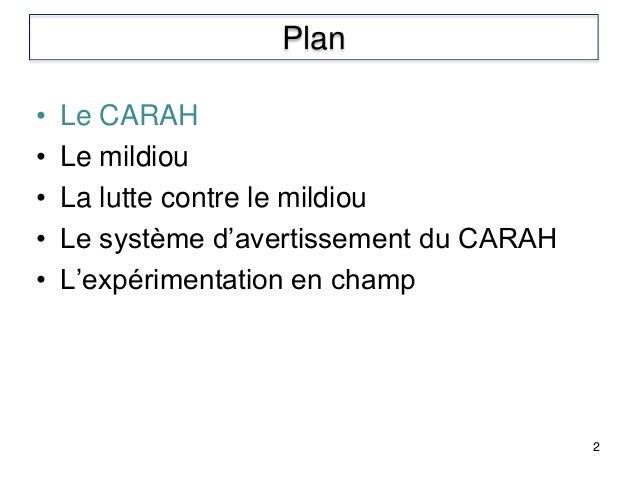 • Le CARAH • Le mildiou • La lutte contre le mildiou • Le système d'avertissement du CARAH • L'expérimentation en champ 2 ...
