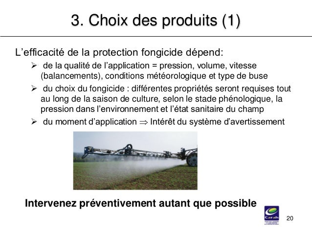 20 3. Choix des produits (1) L'efficacité de la protection fongicide dépend:  de la qualité de l'application = pression, ...